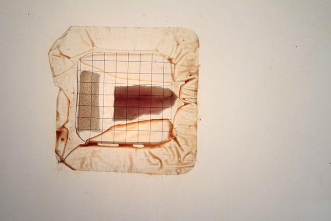 pawel-wocial-no-preservatives-photo