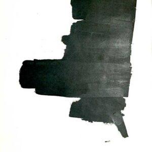 pawel-wocial-prehanging-bull-693x1024-min