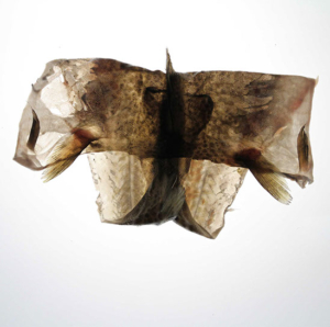 pawel-wocial-under-construction-02-photo