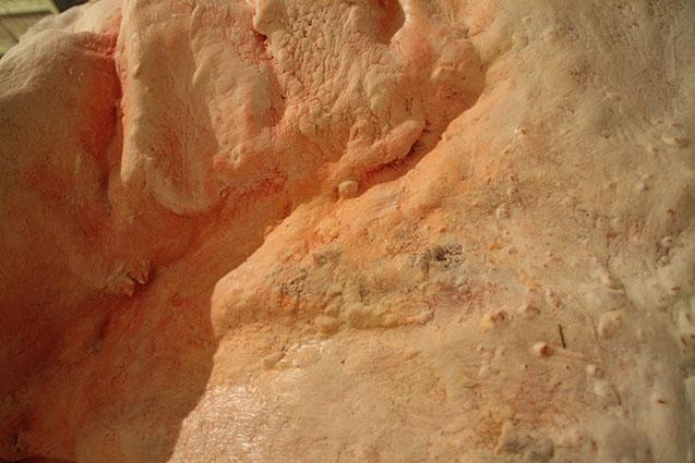 Pawel-Wocial-The-Hummingbird-art-wax-installation
