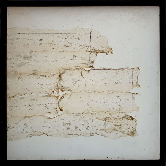 Pawel-wocial-sztuka-organiczna