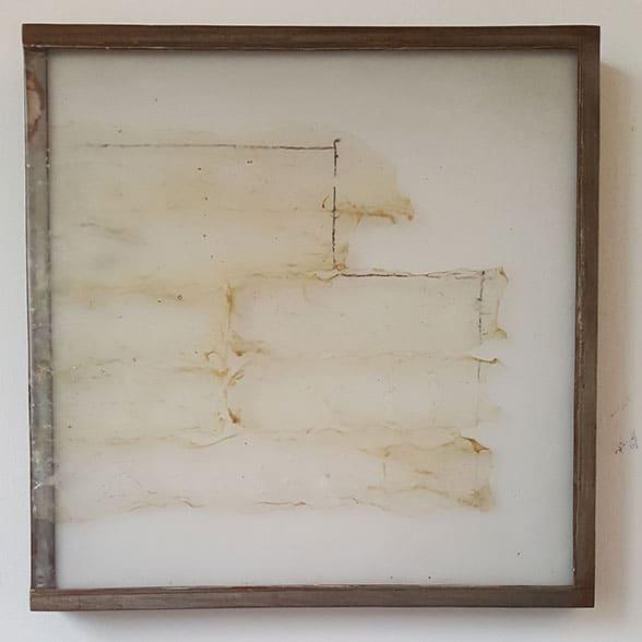 Pawel-wocial-white-cube-organic-art