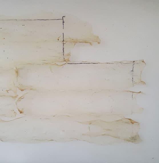 Pawel-wocial-white-cube-sztuka-organiczna